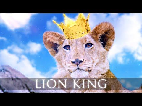 elektronomia---lion-king-(ft.-caroline)