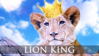 Elektronomia - Lion King (Ft. Caroline)