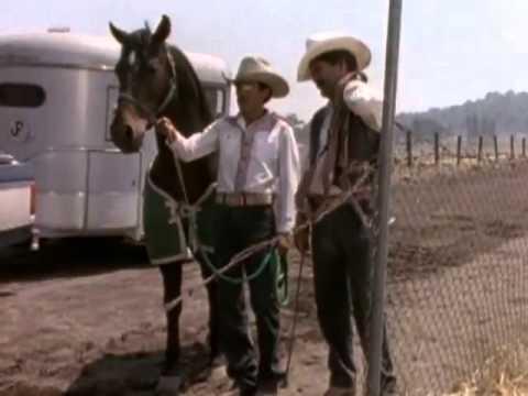 el-vaquero-y-la-dueña-1998---pelicula