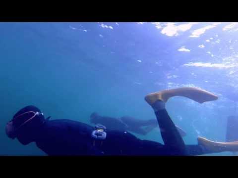 ama (woman diver) Toba-city