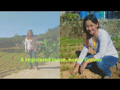 A registered nurse, now an organic vegetable grower of Livegreen International Incorporated