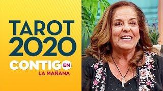 El tarot de Ángeles Lasso: ¿Cómo estará tu signo este año? - Contigo En La Mañana