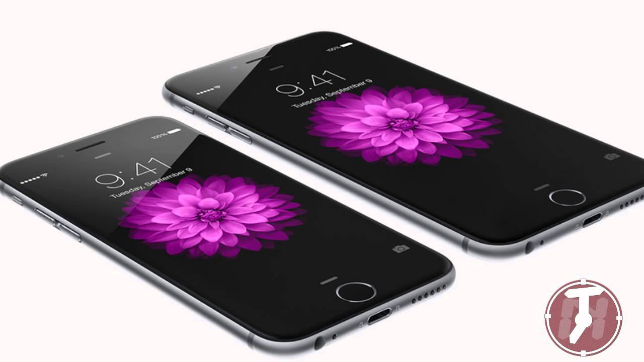 Apple iPhone 6 vs iPhone 6 Plus: Differences and ... |Iphone 6 Features Video Download