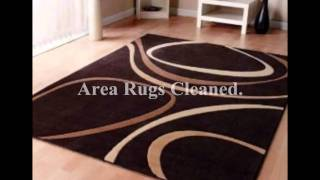 Professional Carpet, Rug & Upholstery Cleaning Services (Pure Green Cleaning Chicago).