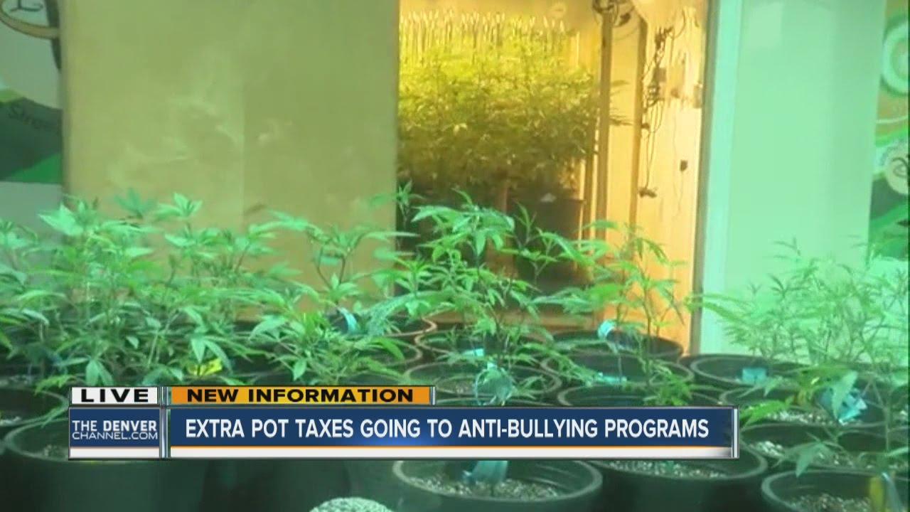 Marijuana excess taxes will go to anti-bullying programs