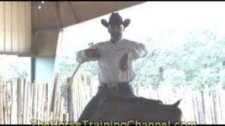 Horse Training Tip: Inside Secret To Understanding A Flowing, Slow Lope