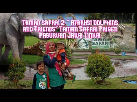 "taman-safari-2-""antraksi-dolphins-and-friends""taman-safari-prigen-pasuruan-jawa-timur"