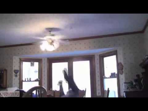 Светильник с вентилятором потолочный фото