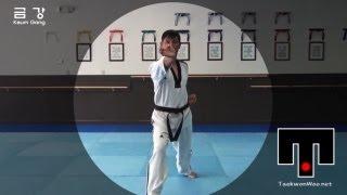 WTF Taekwondo poomsae  Keumgang 품새 금강 (taekwonwoo)