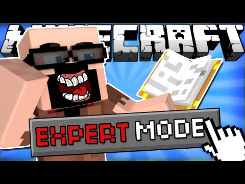 Thumbnail: If EXPERT MODE was Added to Minecraft