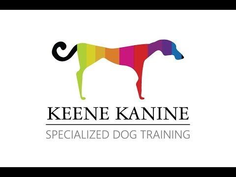 Certified Dog Trainer | Nassau County, Long Island