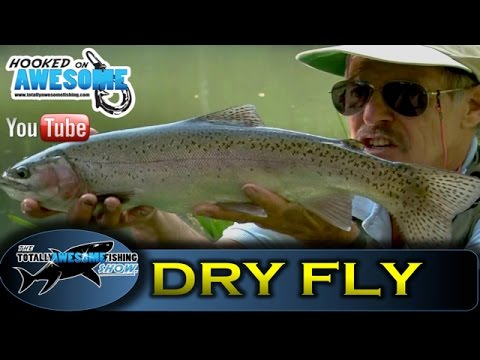 Dry fly fishing for Trout in Stillwaters - TAFishing Show