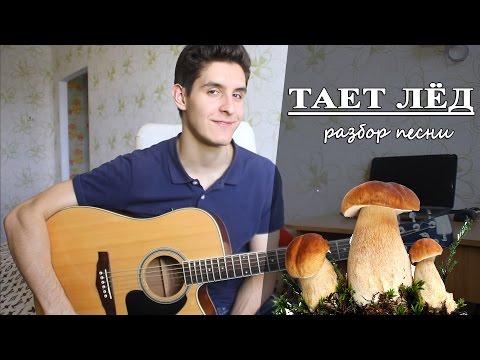 Как играть: ГРИБЫ - ТАЕТ ЛЕД аккорды (Полный Разбор Песни)