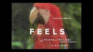 Download Calvin Harris - Feels ft. Pharrell Williams, Katy Perry, Big Sean ( Full Audio ) MP3 song and Music Video