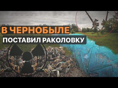 Проверяю раколовку в Черныбыле. 24 часа