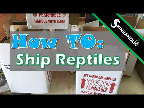 How To #10 - Shipping Reptiles