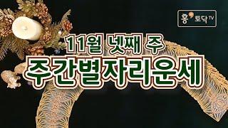[홍테라타로/11월넷째주주간별자리운세] 11월23일~29일 11월 넷째주 주간별자리운세 타로.