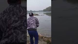 Рибалка Дністер 4.700 гр., Суклея