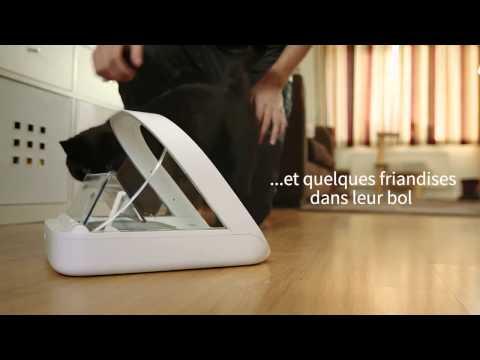 ▶ Accessoires Chien & Chat   High-Tech   Gamelle Pour Chien & Chat   Gamelle Automatique Surefeed