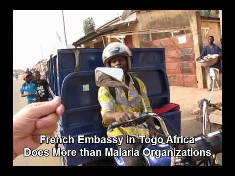 French Embassy in Togo Works to Stop Root Cause of Malaria