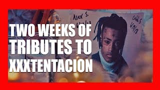 Fans Pay Tribute to XXXTentacion