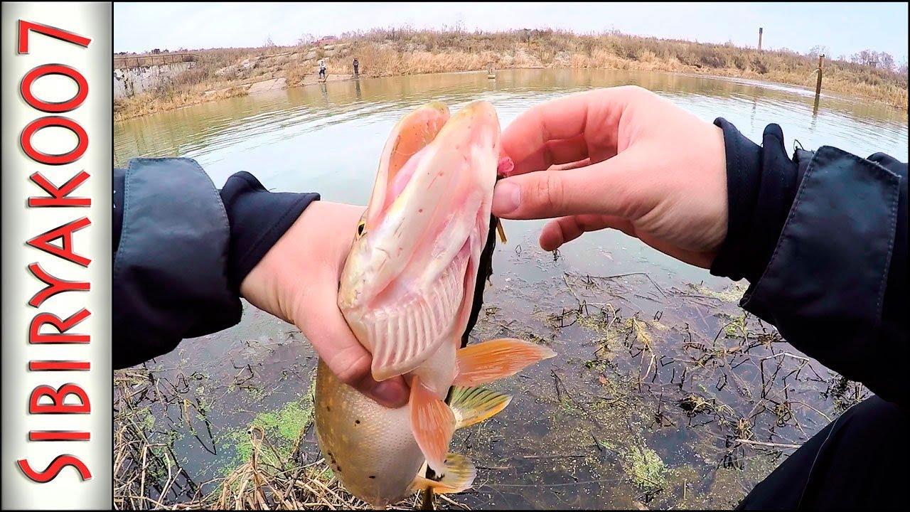 ВОТ ЭТО КАЙФ рыбалка!.. Ловля щуки на Ультралайт!