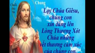 GỢI Ý CẦU NGUYỆN BẰNG CHUỖI HẠT LÒNG CHÚA THƯƠNG XÓT - Gx Phú Tảo, Hải Dương.