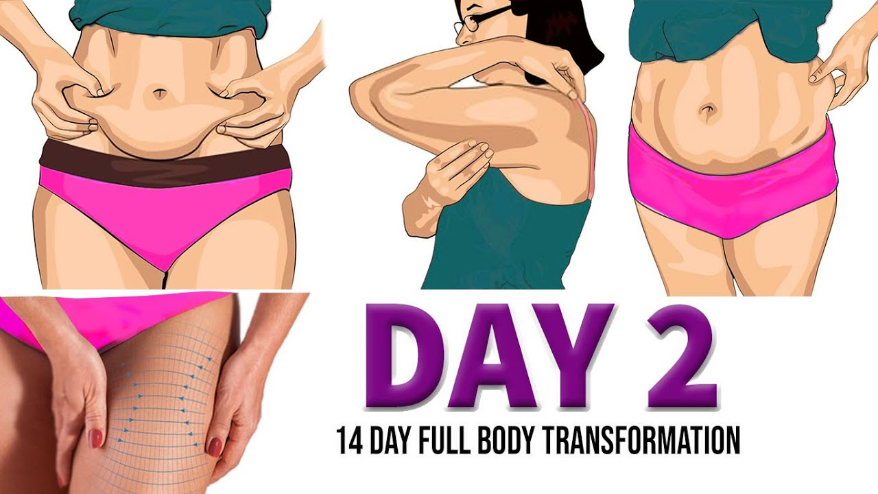DAY 2 (FULL BODY EXERCISES) | 14 DAY FULL BODY TRANSFORMATION