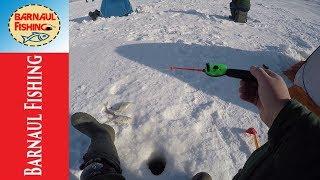 ПЕРВАЯ РЫБАЛКА ПОСЛЕ ГЛУХОЗИМЬЯ .Зимняя рыбалка (Barnaul Fishing)