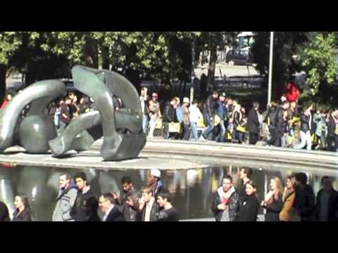 Vienna Business School Akademiestrasse Flashmob