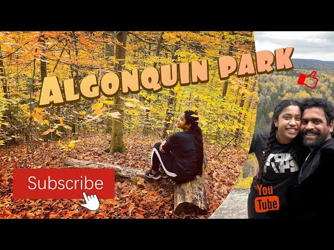 One Day Hiking | Algonquin Park | Fall 🍁🍂 | Ontario, Canada 🇨🇦