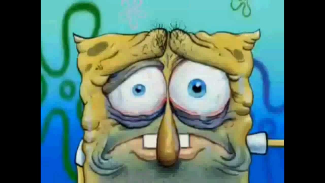 spongebob squarepants danny phantom opening theme song