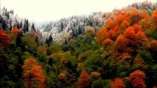 CEM YAZICI- SOLO TULUM KAYDI... Resimi
