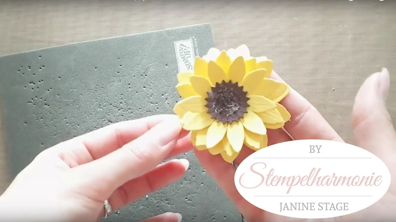 Diy Papierblumen Sonnenblumen Zum Selber Basteln Spellbinders