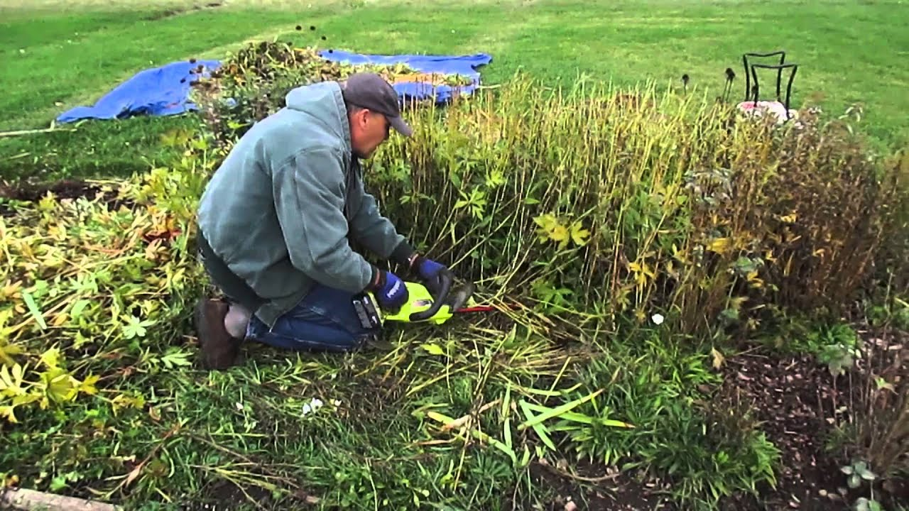 How To Clean Up Perennial Beds In The Fall