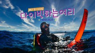 겨울잠 끝~~~ 동해바다 다이빙 가즈아~
