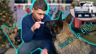 German Shepherd Dos and Don'ts! Please DON'T DO THIS!