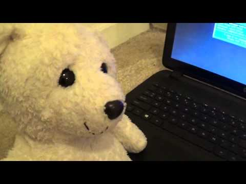 Fluffy's Computer Repair Shop