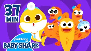 Five Little Fishes Jumping on the Kelp and more | +Compilation | Homeschooling with Baby Shark