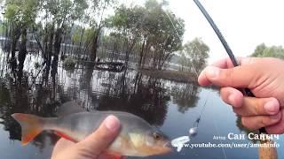 Рыбалка на Тавде