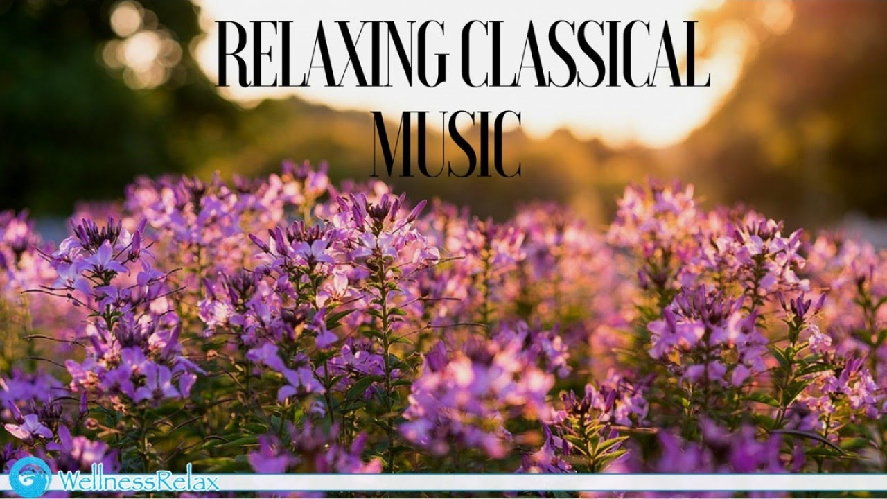 Relaxing Classical Music | Classical Music for Focus, Studying and Reading