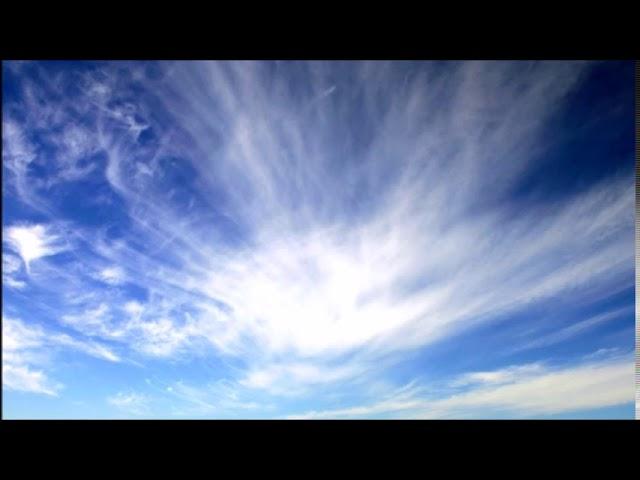 Messiaen: Transports de Joie