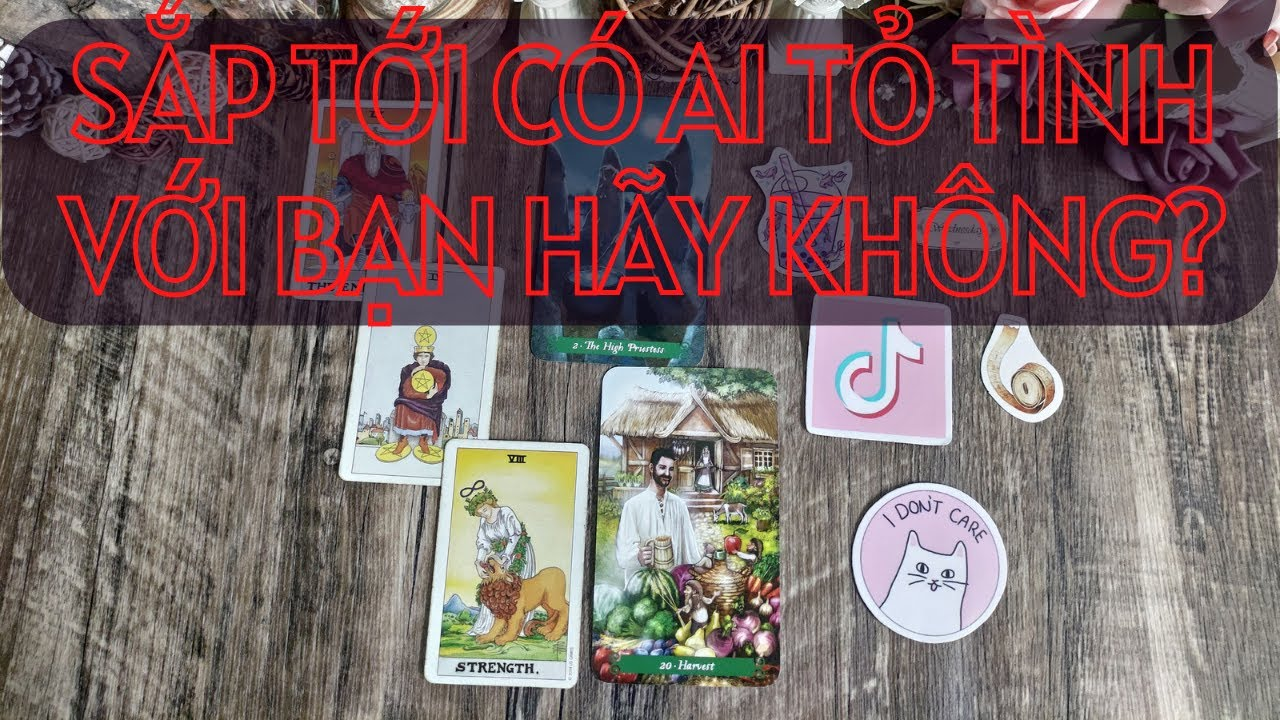 Chọn 1 tụ bài Tarot – Sắp tới có ai tỏ tình với bạn hay không – Alo Andy