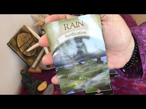 "LEO August 2017 Tarot:  ""Rain""...purification, time to cleanse your soul!"