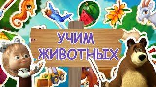 УЧИМ ЖИВОТНЫХ Вместе с Маша и Медведь Обучающия Игра Видео Для Детей