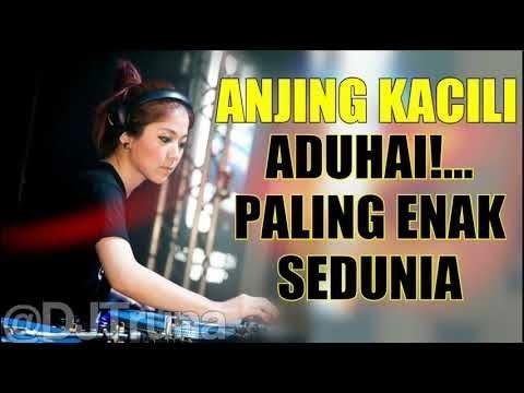 DJ ANJING KACILI ADUHAI PALING ENAK SEDUNIA 2018