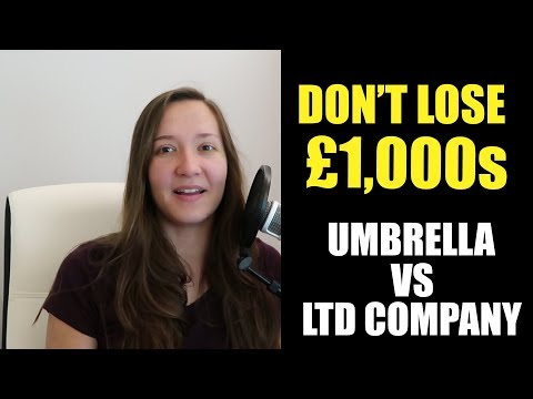 Limited Company vs Umbrella