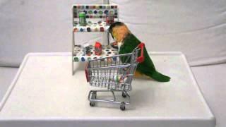 caique shopping at super market