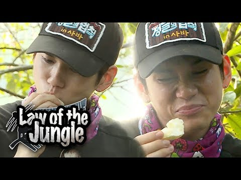 OngSeongWu Quickly Eat Up The Lime! And Spitting Out 😂 [Law Of The Jungle Ep 325]