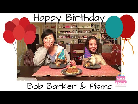 foodmania-review:-dog-birthday-cake-for-bob-barker-&-pismo!